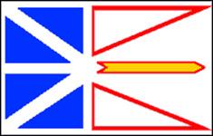 NFL and Labrador Flag
